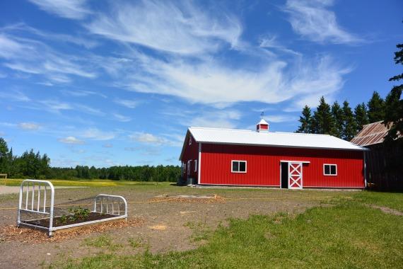 farm 002