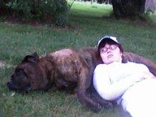 mastiff, dog, woman
