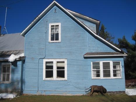 mastiff, farmhouse