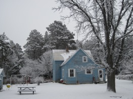 snowy farmhouse, snowy trees