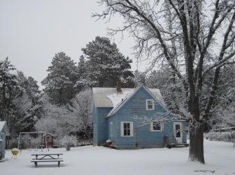 snowy farmhouse, snowy trees