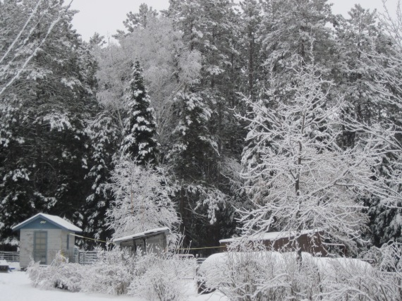 snow, mn, playhouse, outhouse, garden shed, barn