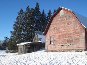 barn, farm, winter