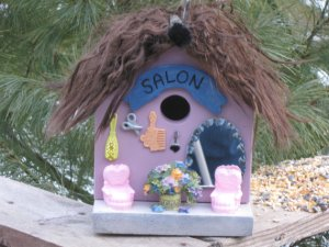 birdhouse, salon, holed up north, cook dollar barn