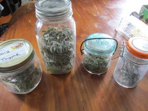 omnom, thyme, sage, celery leaf, rosemary, funny farm, organic