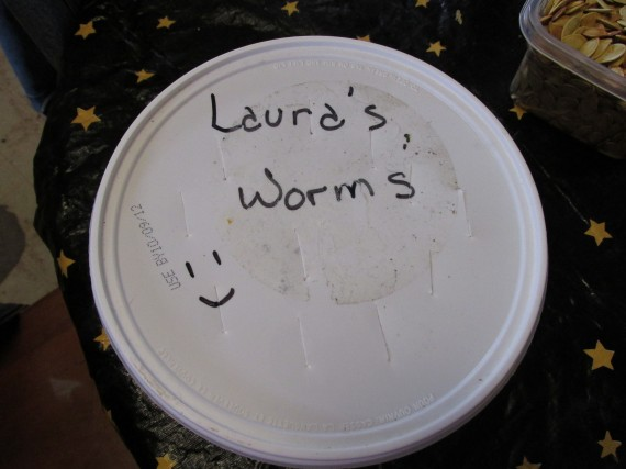 worms, vermiculture, compost, recycle, fertilizer