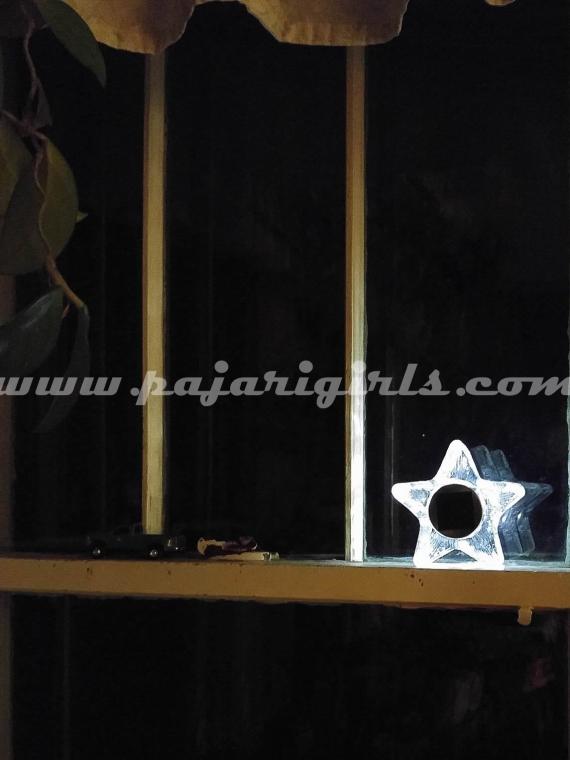 Star Solar Light (1 of 1)